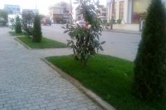 kipos_greenland161